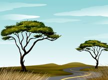 Road through savanna field. Illustration Stock Images