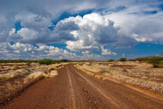 The road in the savannah Royalty Free Stock Photos