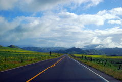 Road scenery. With mountains on horison Royalty Free Stock Photos