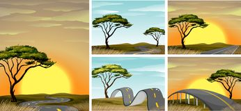Road scenes in savanna field at sunset. Illustration Stock Image
