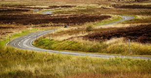 Road in Scotland Royalty Free Stock Photos