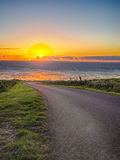 Road by the sea. A windy road cuts through the green grass along the seaside coast of Tasmania at sunset Royalty Free Stock Image