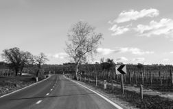 Road with a sharp corner ahead. Somewhere in Slovenia royalty free stock image