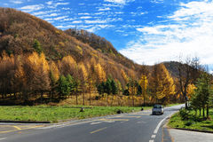 A road in Sichuan, China Stock Photography
