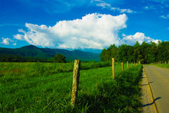 Road Side Mountain Stock Photography