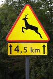 Road sign. Traffic sign reminding drivers that animals might cross the road stock photography