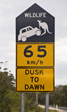 Road sign. Alerting to the presence of kangaroos and its danger royalty free stock photo