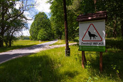 Road sign attention wolf. Danger stock photos