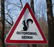 Road sign  BEWARE of SQUIRRELS. Royalty Free Stock Image
