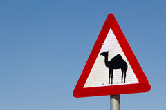 Road sign with a camel. A triangular road sign with a camel in Jordan Royalty Free Stock Images