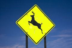 Road sign deer crossing Royalty Free Stock Photos