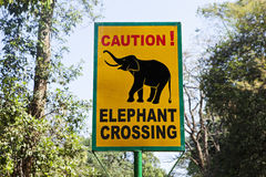 Road sign  elephant crossing Royalty Free Stock Photography