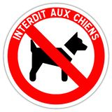 Road sign: forbidden to dogs. Road sign in France: forbidden to dogs with French writing vector illustration