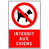 Road sign: forbidden to dogs. Road sign in France: forbidden to dogs with French writing stock illustration