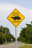Road sign in a habitat erea. A road sign in a Gopher Tortoise habitat area Stock Photography