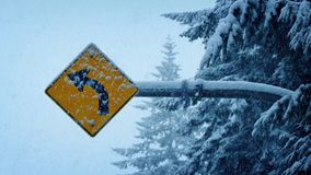 Road Sign In Heavy Snowfall stock video footage