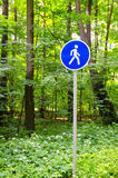 Road sign. Installed in the forest Royalty Free Stock Image