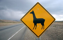 Road sign for lama. Danger road sign for lamas in the Bolivian outback. Bolivia Royalty Free Stock Images