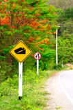 Road sign beside the main road go to the mountain Stock Photo