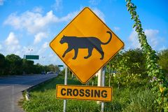 Road sign panther Jaguar crossing mexico. Road sign panther Jaguar crossing in Riviera Maya at Mayan Mexico Stock Image