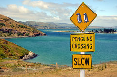 Road sign penguins crossing, Otago peninsula Stock Image