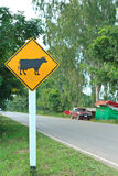 Road sign warning. Road sign warning animals crossing Royalty Free Stock Images