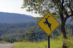 Road sign warning about crossing deer Royalty Free Stock Image