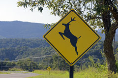 Road sign warning about crossing deer. SANTANA DE PARNAIBA, SP, BRAZIL - AUGUST 1, 2015 - Wild animal crossing warning sign in road of Sao Paulo state stock images