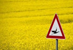 Road sign with a warning of flying storks Stock Photo