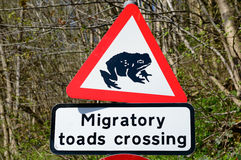Road sign warning of migratory toads crossing in Britain Stock Photo
