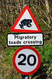 Road sign warning of migratory toads crossing in Britain Royalty Free Stock Photos