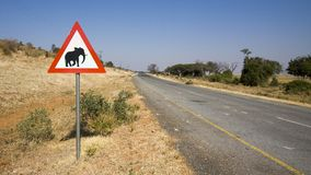 Road sign warning of possible elephant crossing royalty free stock photography