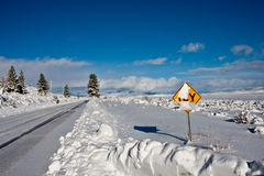 Road sign in winter Royalty Free Stock Image