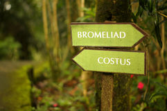 Road signs. In a botanical garden directing visitors to different types of vegetation royalty free stock images