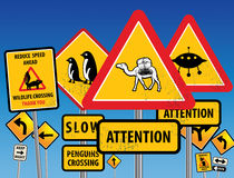 Road signs chaos. On blue background Royalty Free Stock Images