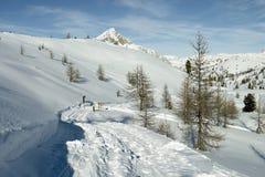 Road and ski trails, Italian Alps Royalty Free Stock Photos