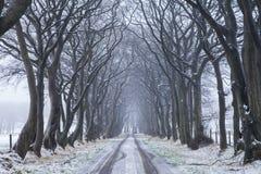 road slippery Στοκ Φωτογραφίες