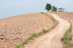 Road on the slopes of the hill area to be tilled. Royalty Free Stock Image