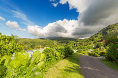 Road at small residential area of Mahe island, Seychelles Stock Images