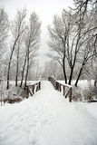 Road in the snow Royalty Free Stock Photo
