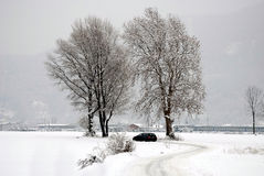 Road in the snow Royalty Free Stock Image