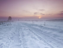 Road in snow Stock Image