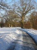 Road through the snow Royalty Free Stock Photos