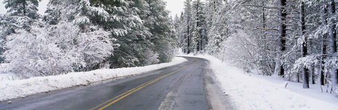 Road through snow Stock Photography