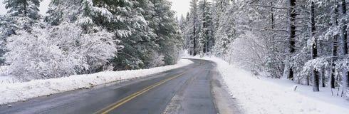 Road through snow Stock Photography