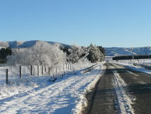 Road snow. A rural snow covered road with snow covered trees near Queenstown, New Zealand Royalty Free Stock Images