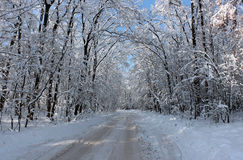 Road snow-covered Royalty Free Stock Image