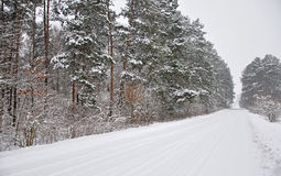 Road  snow covered Royalty Free Stock Photography