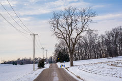 Road and snow covered fields, near Shrewsbury, Pennsylvania. Royalty Free Stock Photo