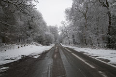 Road in the snow in forest Stock Photo